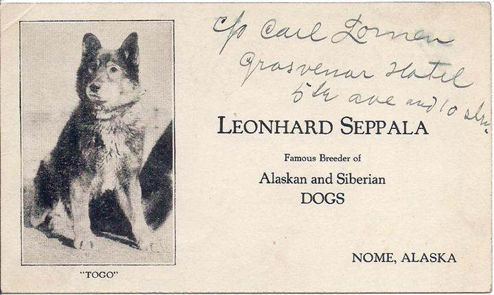 Una cartolina con Togo, autografata da Seppala