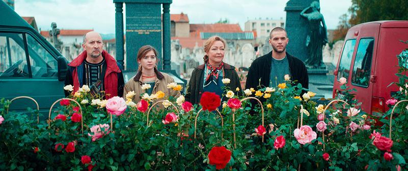la signora delle rose